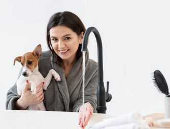 Best Antifungal Shampoo for Dogs [Medicated Natural]